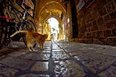 Старые узкие улицы Яффы стоковая фотография
