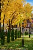 Старые фонарные столбы в осени Ñ€ark Стоковая Фотография RF