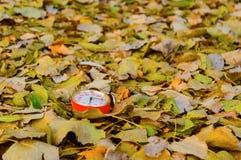 Старые часы на листьях осени в парке предпосылка осени легкая редактирует природу изображения для того чтобы vector Стоковые Фото