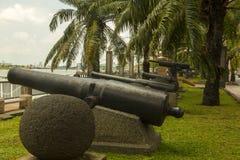 Старые canons Стоковое Изображение RF