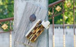 Старый автомат защити цепи ретро и сломленной пакостной ржавчины электрический Стоковые Фото