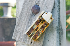 Старый автомат защити цепи ретро и сломленной пакостной ржавчины электрический Стоковые Изображения