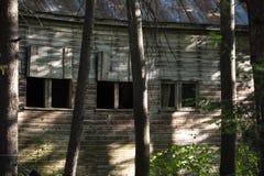 Старый амбар в деревьях стоковая фотография rf