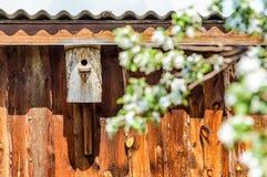 Старый амбар в саде с birdhouses весной Стоковое Изображение