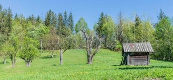 Старый амбар и старые деревья в саде Стоковая Фотография RF