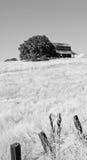 Старый амбар на холме Стоковая Фотография