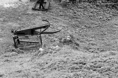 Старый античный арбалет в траве Стоковое фото RF