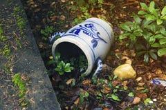 Старый бак в саде Стоковая Фотография