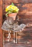 Старый ботинок с цветком внутрь Стоковые Изображения