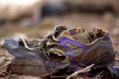старый ботинок Стоковое Изображение