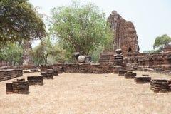 Старый Будда в виске Mahathat Стоковые Изображения RF