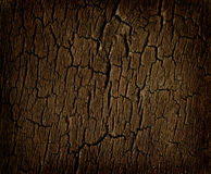старый вал пня Стоковая Фотография