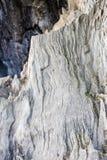 старый вал части Стоковое Изображение RF