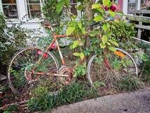 Старый велосипед в засорителях Стоковое Изображение