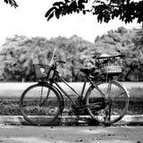 Старый велосипед в парке стоковые изображения rf