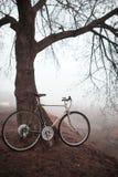 Старый велосипед около дерева Стоковое Изображение