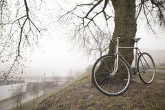 Старый велосипед около дерева Стоковые Изображения
