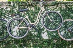 Старый винтажный вид велосипеда на стене как декоративный Стоковые Фото