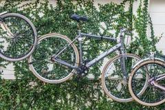 Старый винтажный вид велосипеда на стене как декоративный Стоковые Фотографии RF