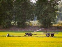 Старый винтажный трактор, сфотографированный в аграрном поле во время лета Сезон сбора желтый расти стоковые изображения