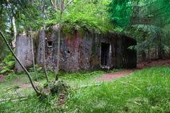 Старый воинский бункер в глубоком лесе Стоковое фото RF