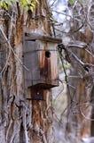 Старый выдержанный деревянный Birdhouse Стоковые Изображения