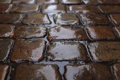 Старый влажный булыжник в дожде стоковое фото rf