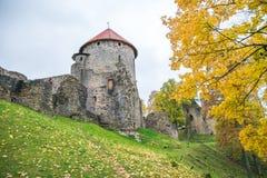 Старый городок, город, парк замка в Cesis, Латвии 2017 Стоковые Изображения