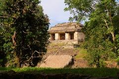 Старый город Майя Palenque XVI Стоковая Фотография RF
