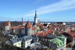 Старый городок в Таллине стоковые фото