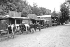 старый городок западный Стоковое фото RF