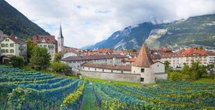 Старый городок chur, с виноградником Стоковое фото RF