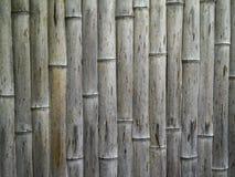 Старый грубый бамбук японца текстуры Стоковые Изображения