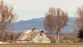 Старый деревянный амбар на ферме Айдахо с 2 деревьями и горами побежал Стоковое фото RF