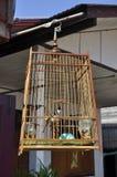 Старый деревянный день Hang Birdcage Стоковая Фотография RF