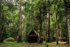 Старый деревянный коттедж в лесе Стоковые Изображения