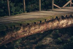 Старый деревянный мост в глубоком лесе, естественной винтажной предпосылке стоковое фото rf