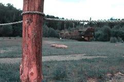 Старый деревянный поляк на мосте стоковое фото rf