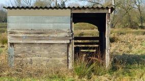 Старый деревянный сарай выгона Стоковое Изображение RF
