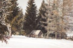 Старый деревянный сарай в зиме Стоковые Изображения