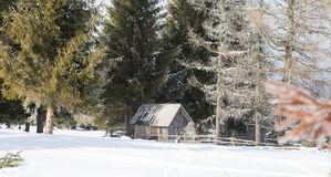 Старый деревянный сарай в зиме Стоковая Фотография