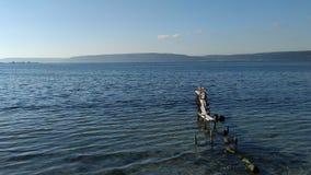 Старый док разрушенный морем стоковые фотографии rf