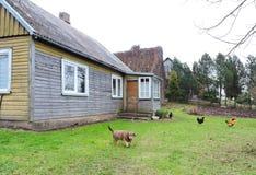 Старый деревянный дом, Литва Стоковые Фотографии RF