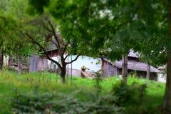 Старый деревянный дом среди деревьев стоковое изображение rf