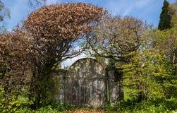 Старый деревянный строб сада в изгороди книги, романтичный дизайн сада, Стоковая Фотография RF
