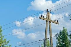Старый деревянный электрический поляк с кабелями в середине передних частей сосны Стоковые Изображения