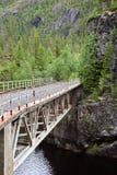 Старый железнодорожный мост Стоковое Фото