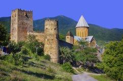 Старый замок в горах Стоковое Изображение