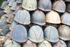 Старый зеленый шлем солдата в передних казармах od Стоковое фото RF