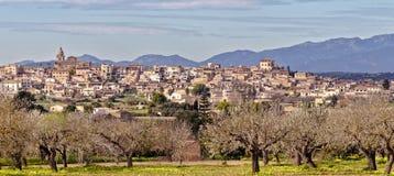 Старый испанский городок Montuiri с цвести деревьями и горами tramountana, mallorca, Испанией стоковое изображение rf